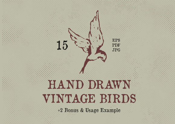 Hand Drawn Vintage Birds