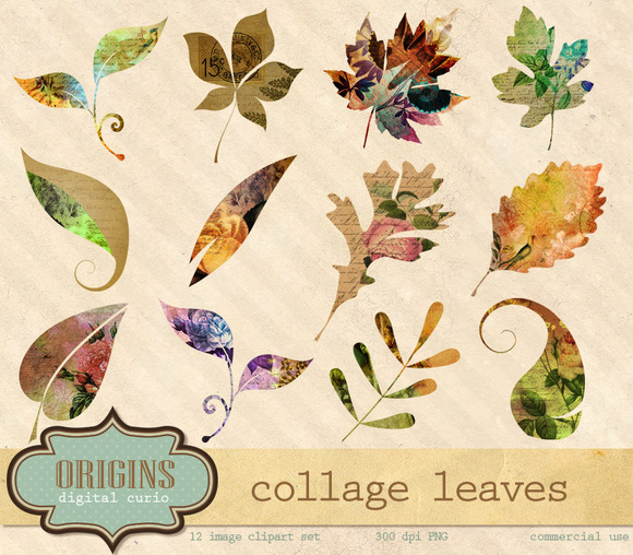 Collage Scrapbook Leaves Clipart