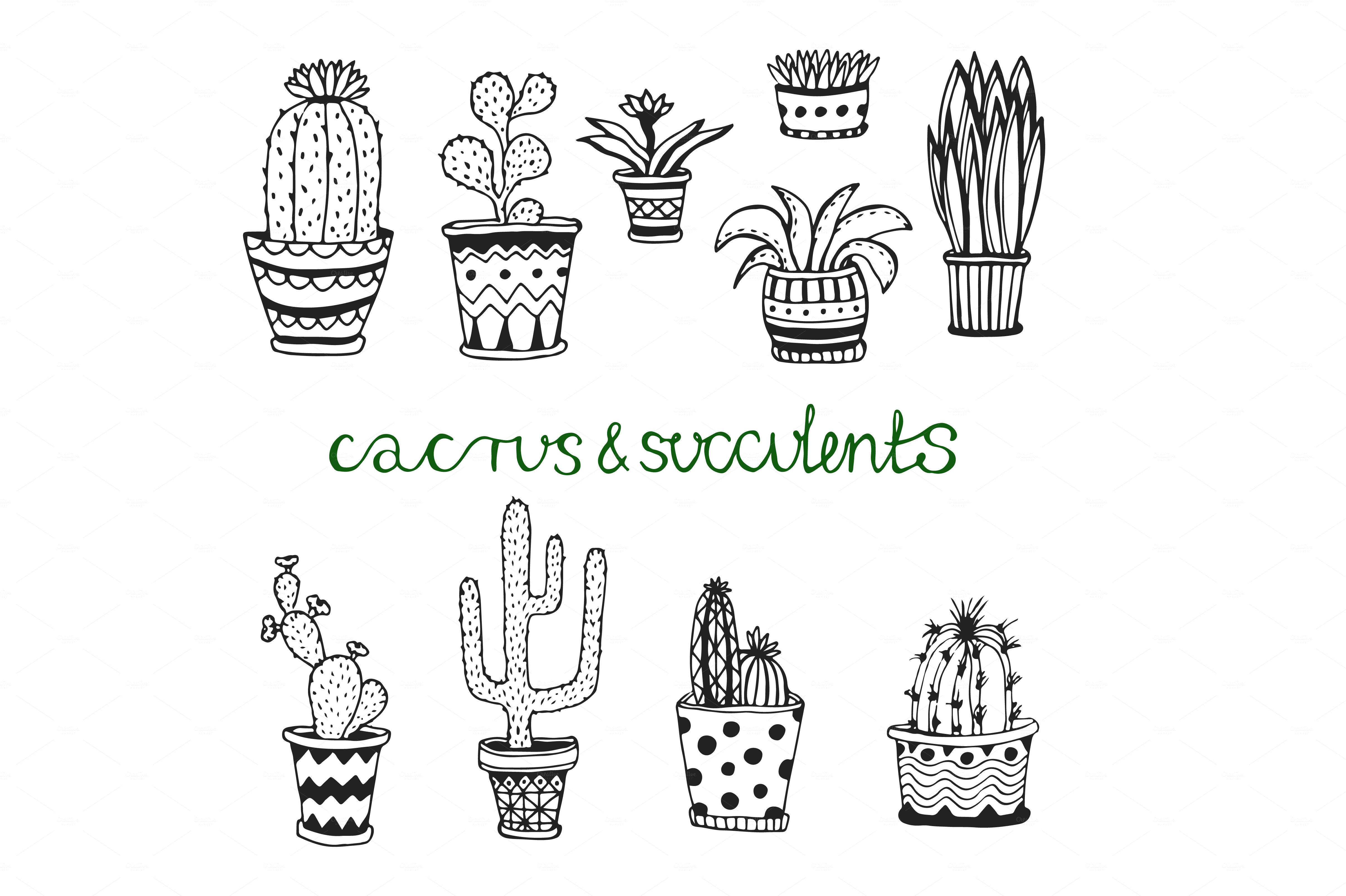 Doodle cactus set Vector art ~ Illustrations on Creative