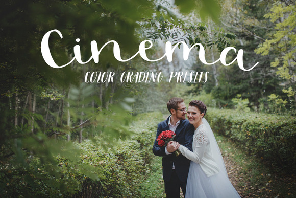 Premiere pro wedding presets actions on creative market for Adobe premiere add ons