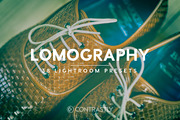 Lomography Lightroom Preset-Graphicriver中文最全的素材分享平台