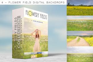 Digital Backdrops - Flowery Fields