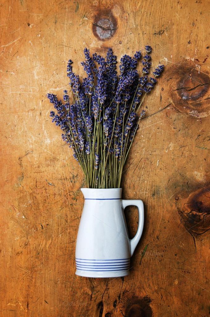 Lavender herbs in vase ~ Health Photos on Creative Market