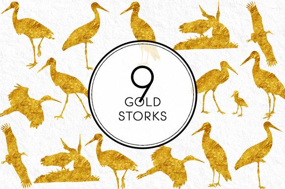Gold Storks