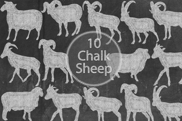 Chalk Sheep