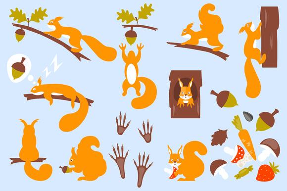 Set of squirrels cartoon. Squirrels. - Illustrations