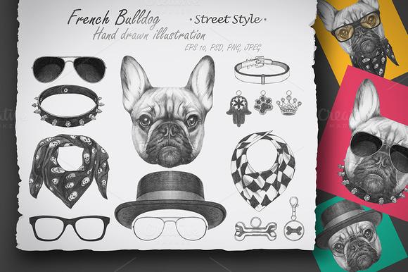 French Bulldog Street Style