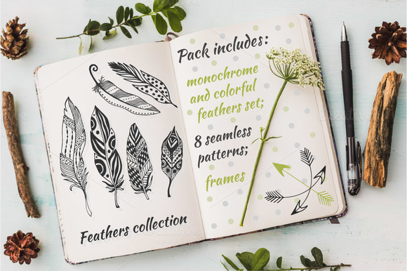 Stylized Feathers Vector Pack