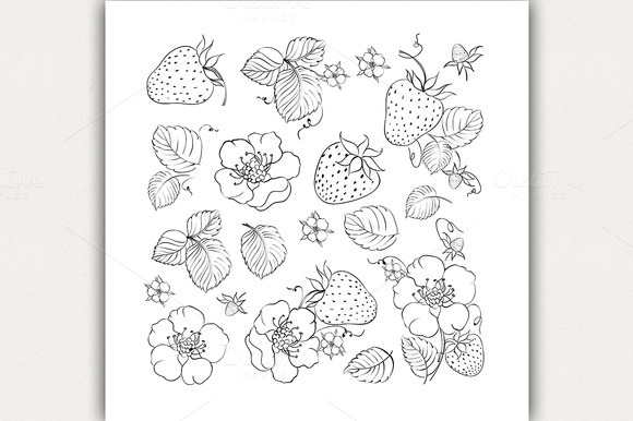 Collection Of Strawberries Elements