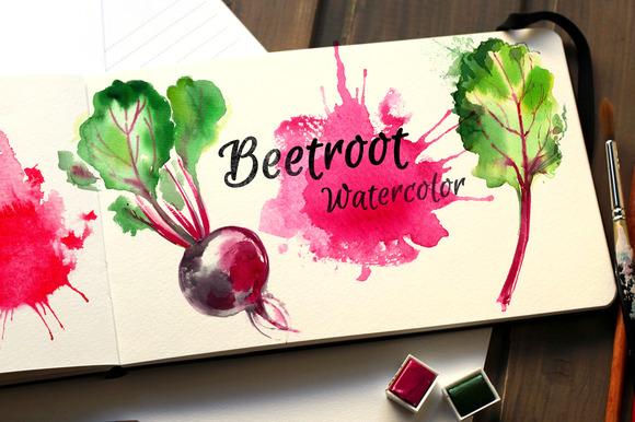 Beetroot. Watercolor sketch food - Illustrations