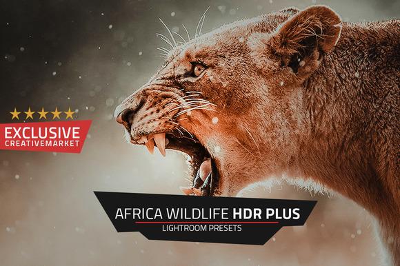 CM - Africa Wildlife HDR Plus Lr Presets 389636