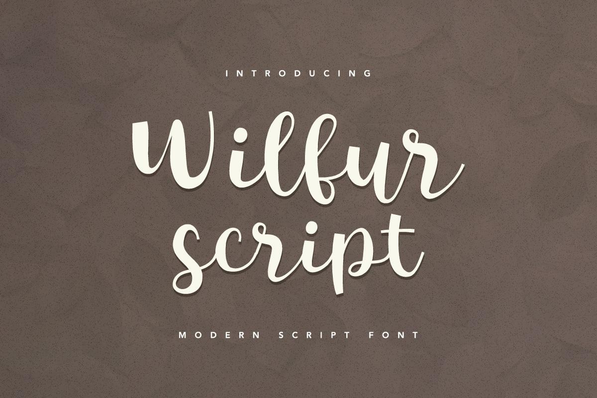 Wilfur Script Script Fonts On Creative Market