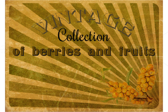 Vintage collection. Fruits, berries. - Illustrations