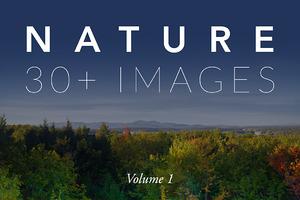 Nature Photo Pack - Volume 1