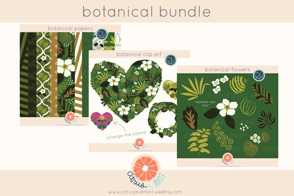 Botanical Clip Art And Digital Paper