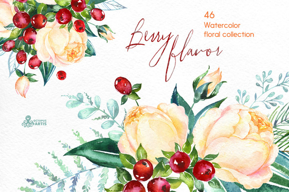 Berry Flavor. Floral collection - Illustrations