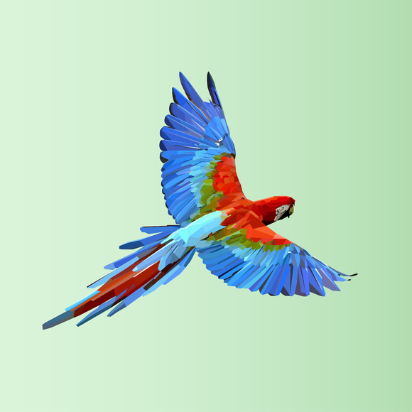 Flying parrot. Colorful vector. - Illustrations