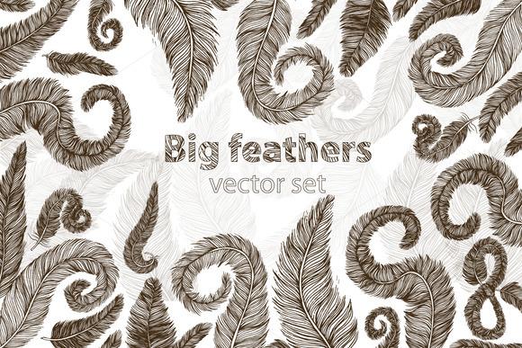 Big Feather Vector Set