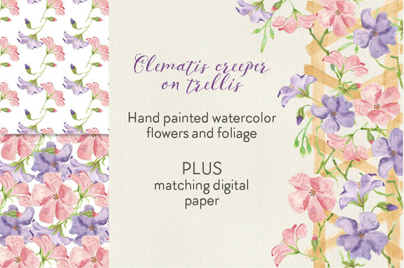 Watercolor Card Template Clematis