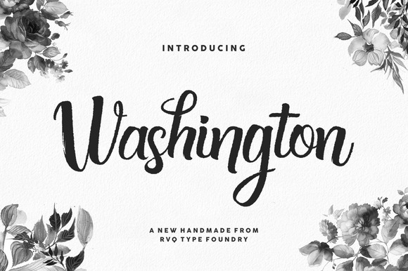 Washington + bonus (introsale) ~ Script Fonts on Creative