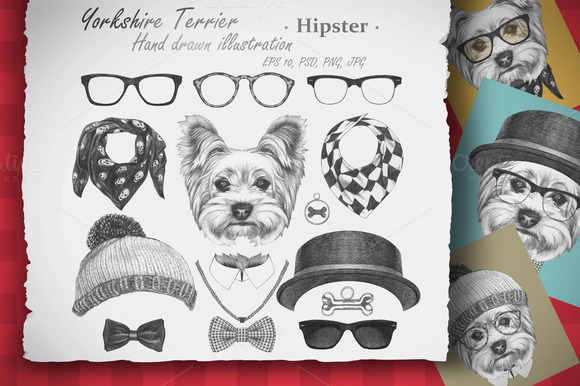 Yorkshire Terrier Hipster
