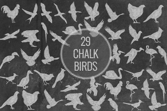 Chalk Birds