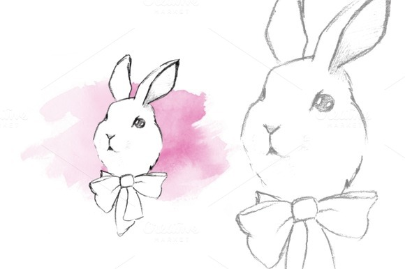 Rabbit. Sketch - Illustrations