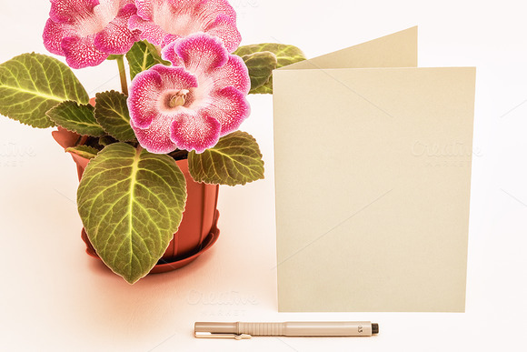 Mockup. Postcards, Gloxinia and pen. - Product Mockups