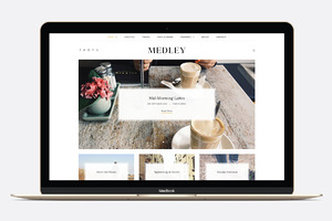 Medley - WP Blogging Theme Save $20!