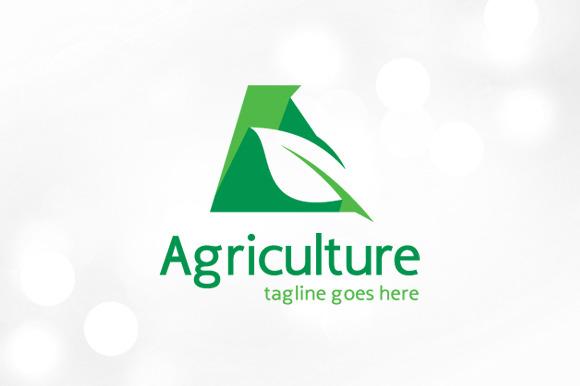 I need to design a logo for my company