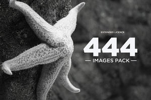 444 Images Pack | Extended Licence