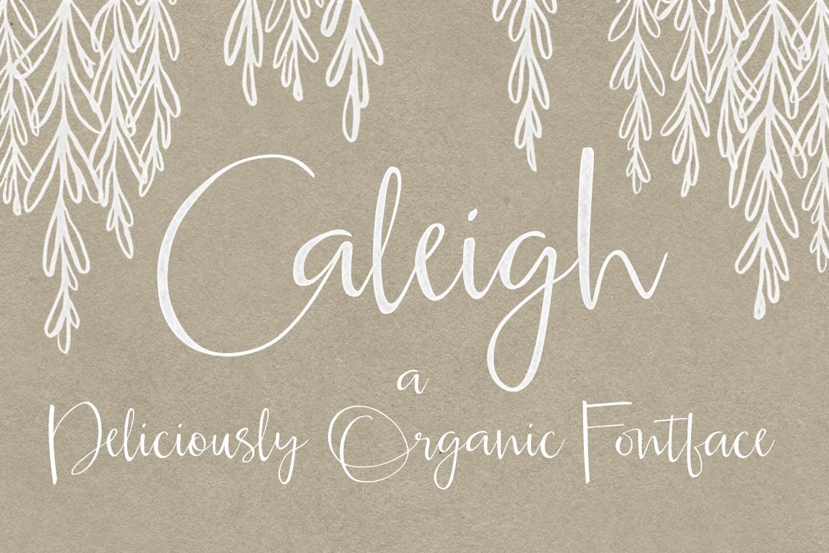 Caleigh Script Font With Bonus Script Fonts On Creative