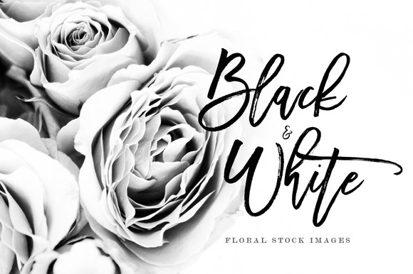 14 Black White Floral Stock Images