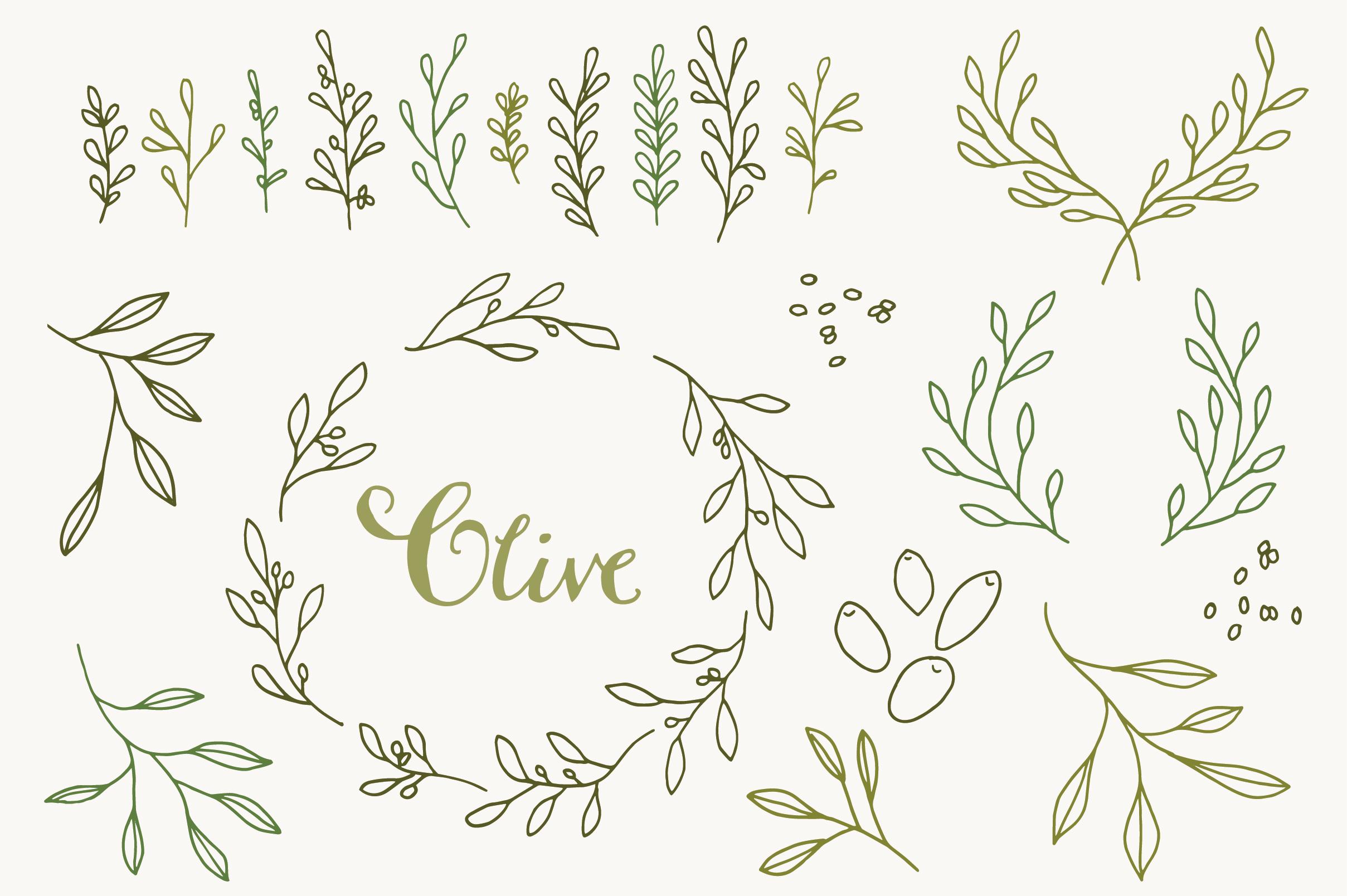 olive branch clip art   vectors   graphics on creative market olive branch clip art images olive branch clip art images