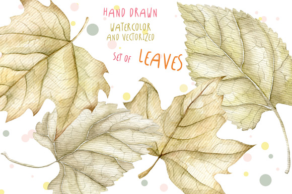4 Watercolor Leaves Hand Drawn