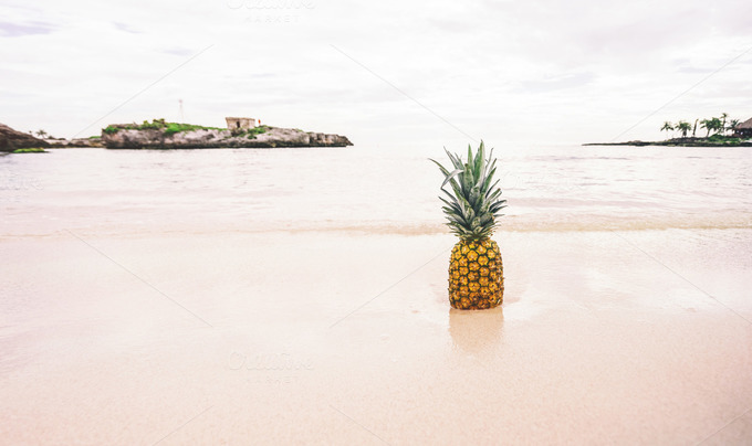 Pineapple in the Sand - Nature