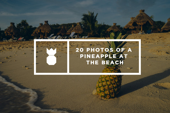 Pineapple's Day at the Beach - Web Elements