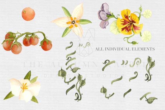Botanical Watercolor Set