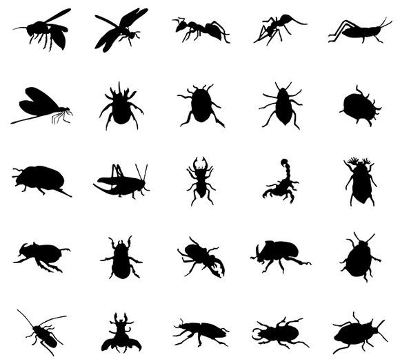 Beetles Silhouettes Set