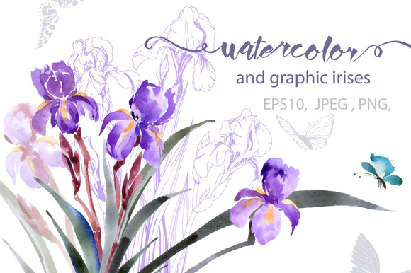 Watercolor And Graphic Irises