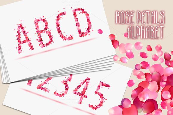 Pink rose petals alphabet. Vector - Objects