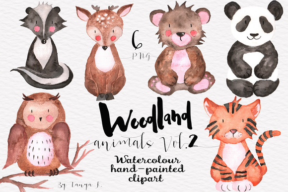 Woodland Animals Vol.2 - Illustrations