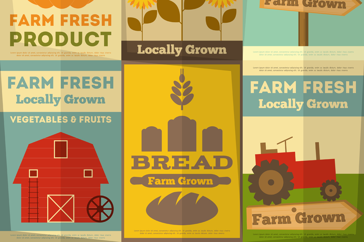 Set Of Posters For Organic Farm Food Illustrations On