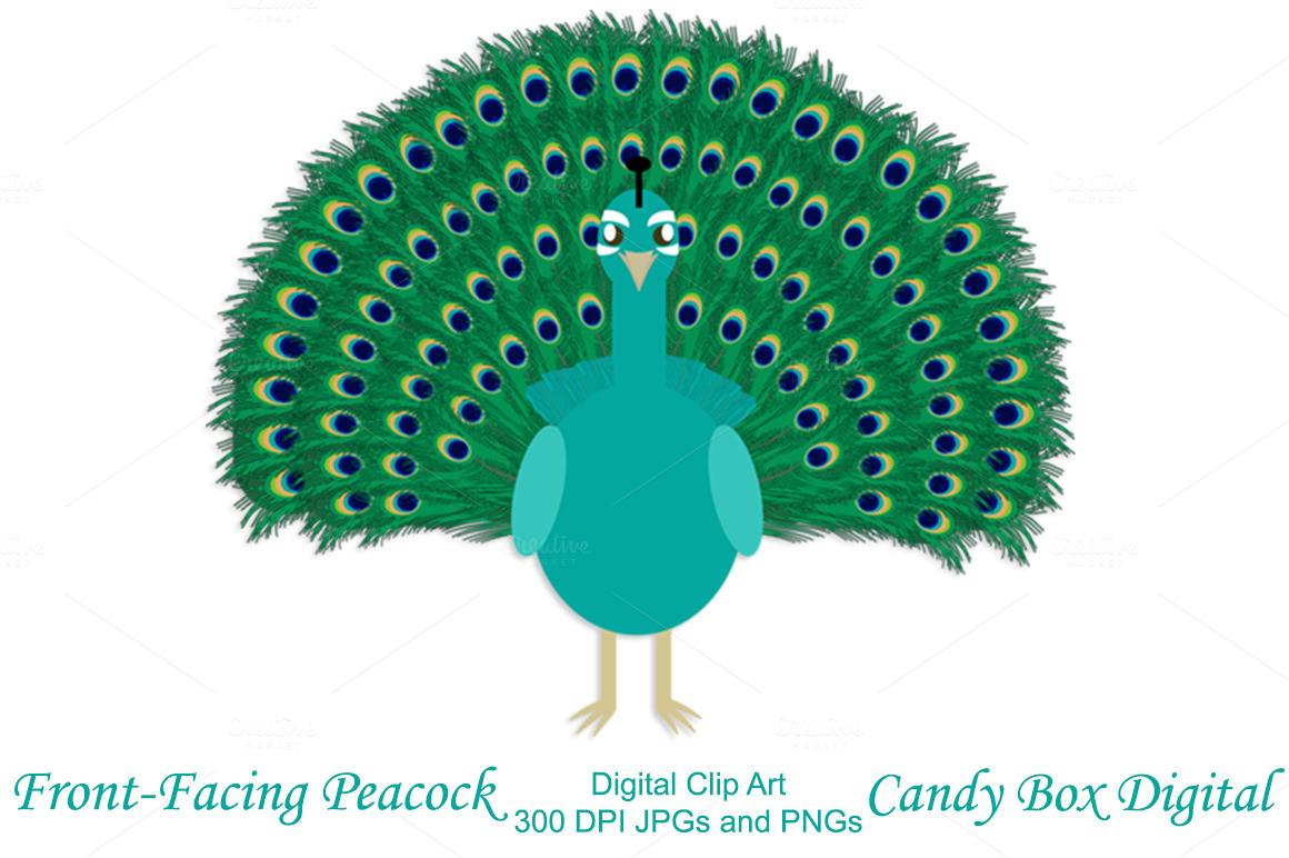 Front-facing Peacock Clip Art ~ Illustrations on Creative Market: https://creativemarket.com/CandyBoxDigital/32832-Front-facing...