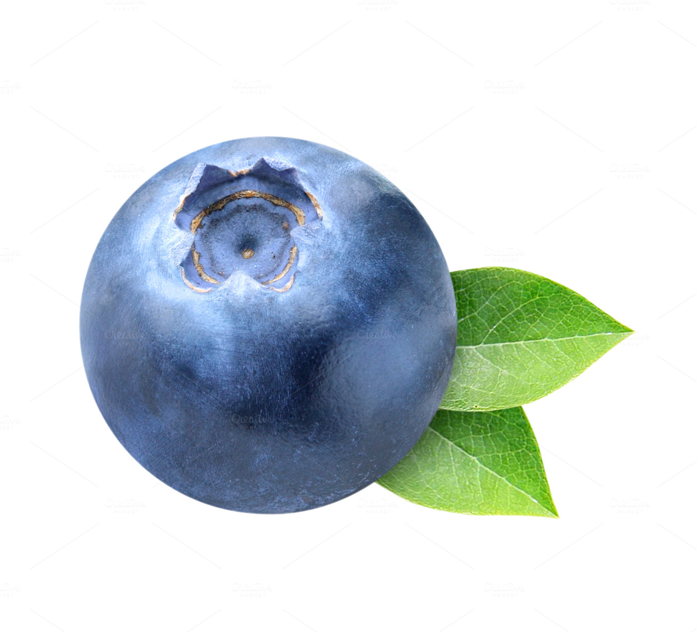 One blueberry isolated with leaves ~ Food & Drink Photos ...