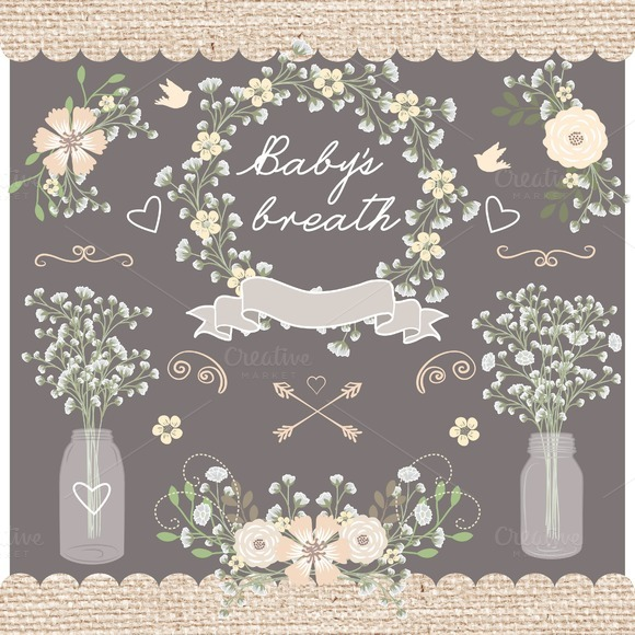 Vector Baby Breath Clip Arts