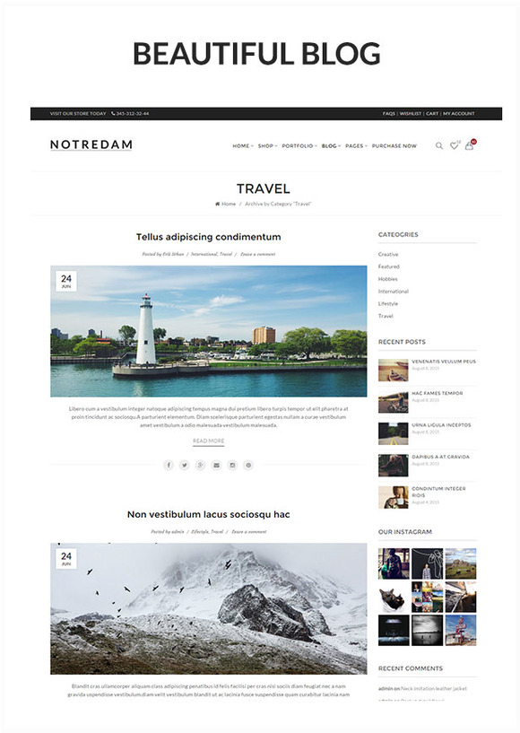 Notredam - Premium WordPress Theme