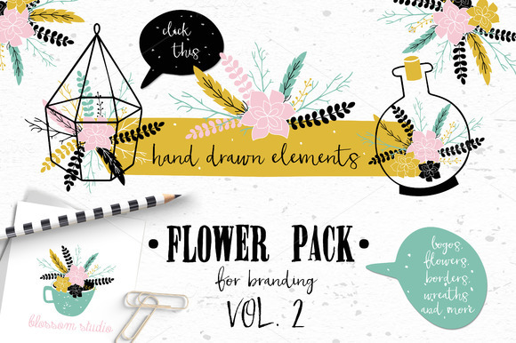 Flower Pack with succulents VOL.2 - Illustrations
