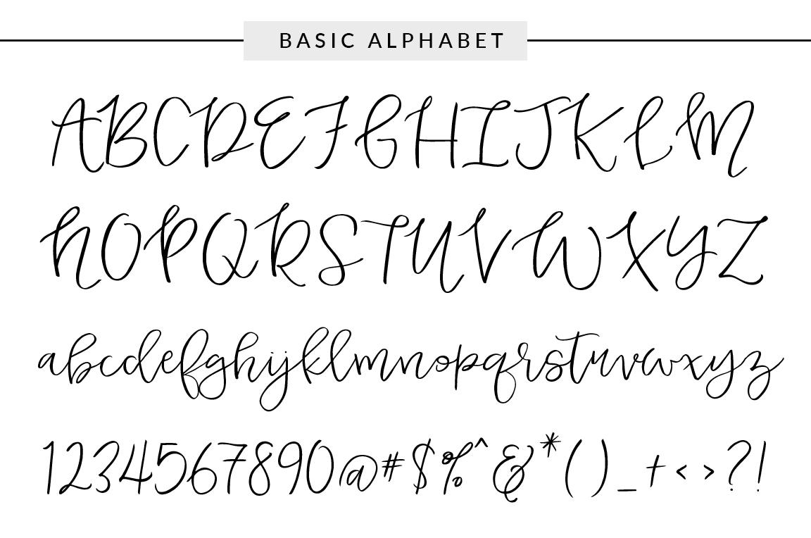 Duckbite Font Family ~ Script Fonts on Creative Market