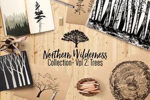 Northern Wilderness: Trees